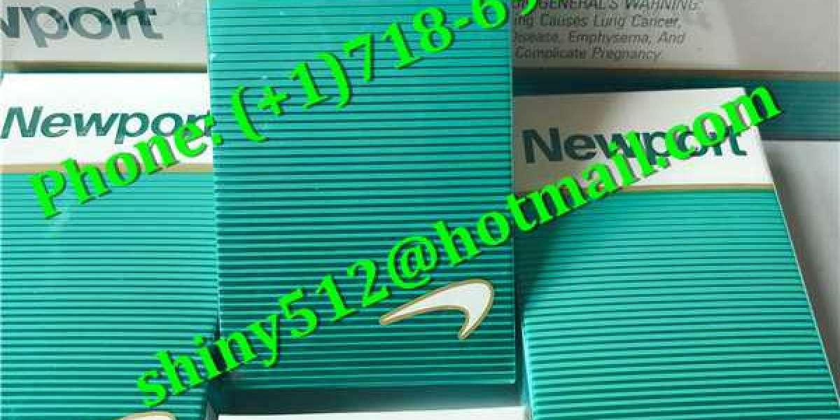 Cheap Newport 100s Cigarettes Online concave as